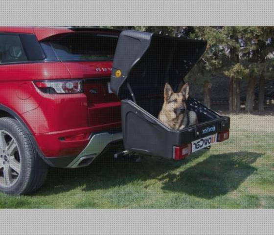 Top 9 Transportines De Perros Para Enganche Coches